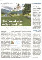 thumbnail of (2020-07-06) Straßenarbeiter retten Insekten