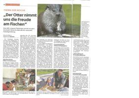 thumbnail of (2021-04-29) Der Otter nimmt uns die Freude am Fischen