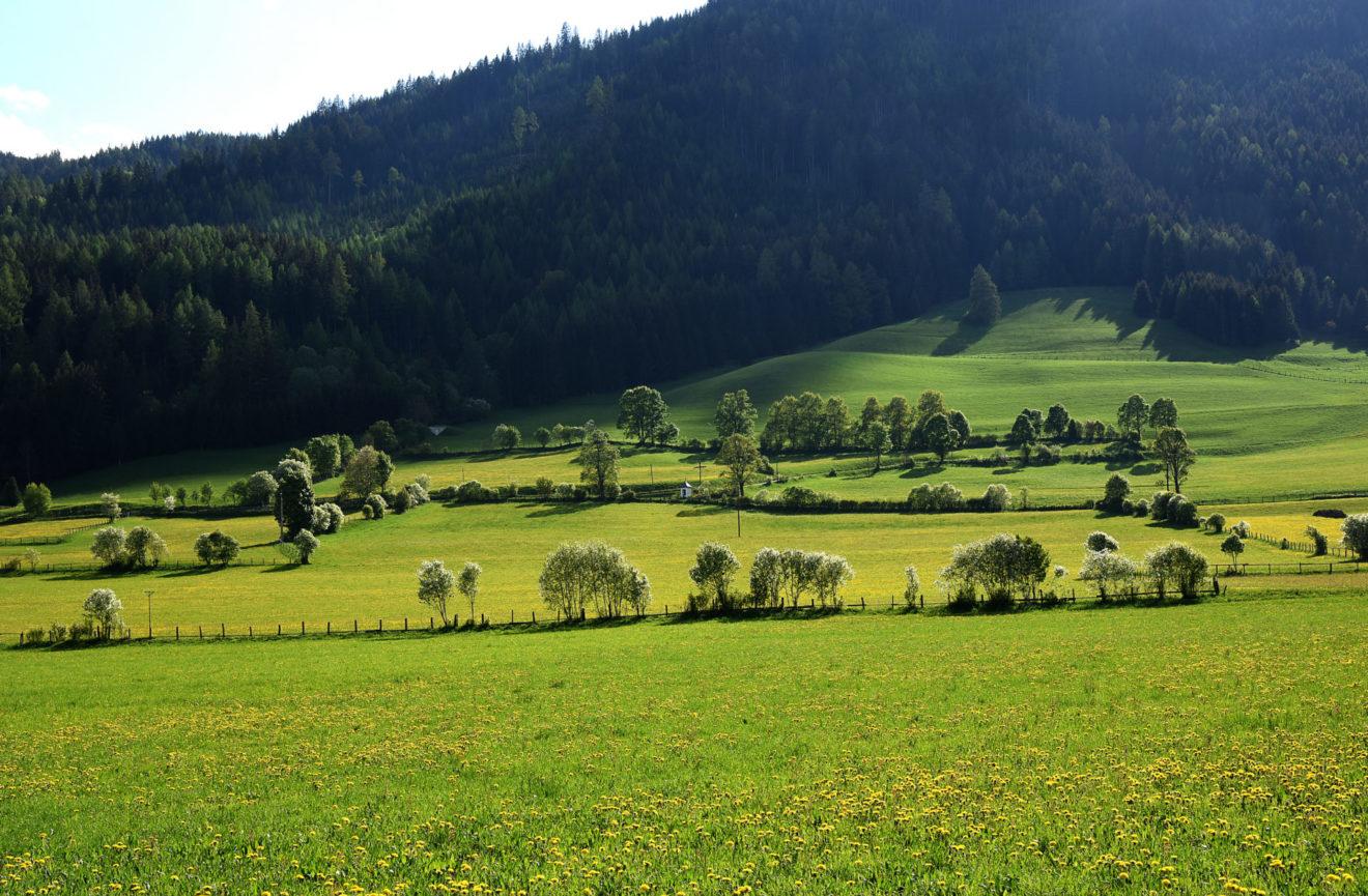 CEETO Richtlinien für eine nachhaltige Tourismusentwicklung in Schutzgebieten
