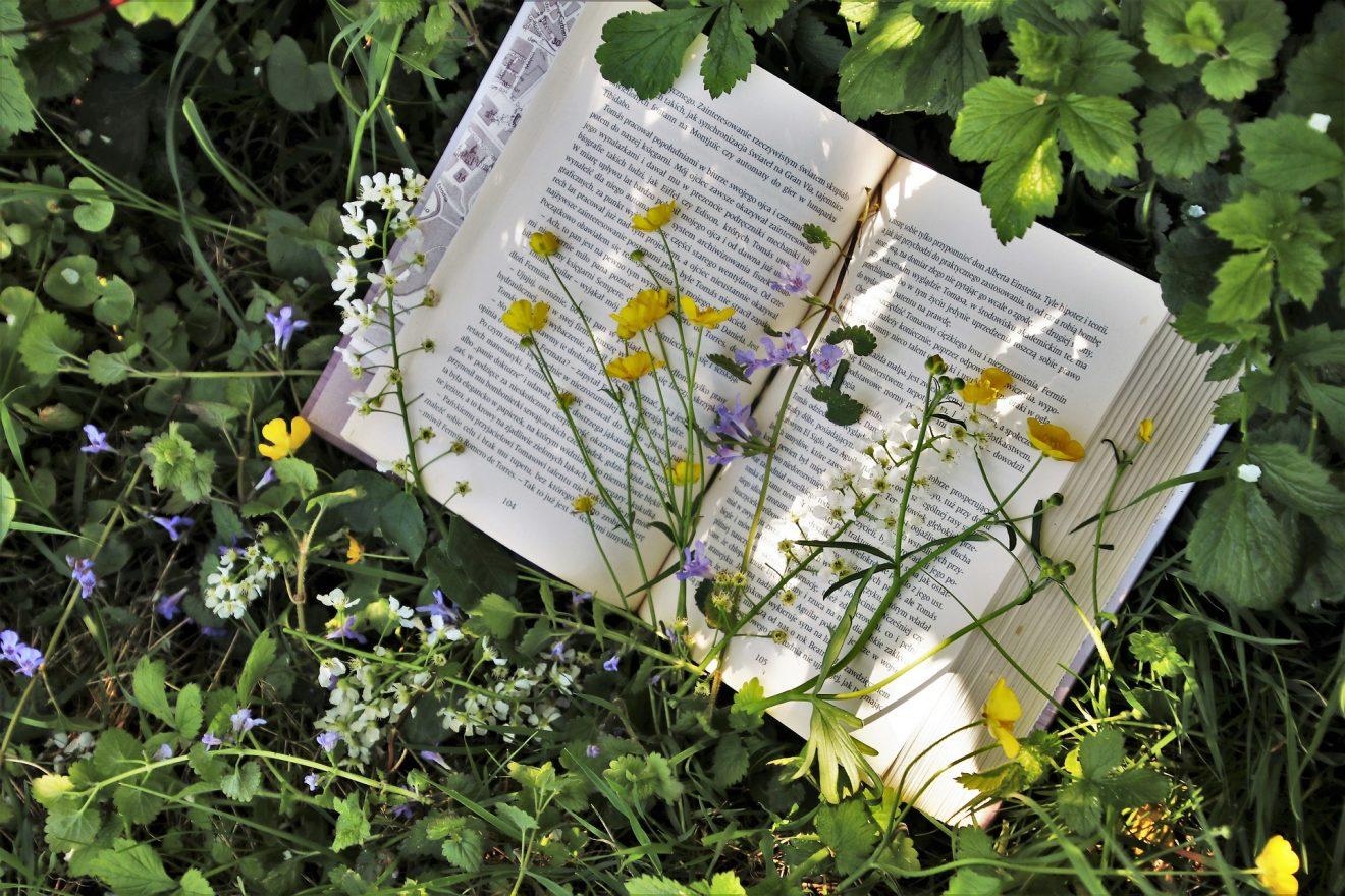 Genussvoll & fit in der Biosphäre durch den Frühling