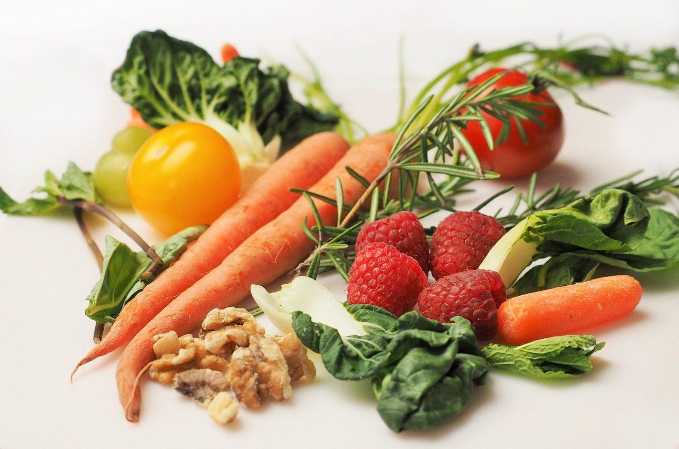 Ernährung und Bioverfügbarkeit - Vom Samen bis zur Körperzelle