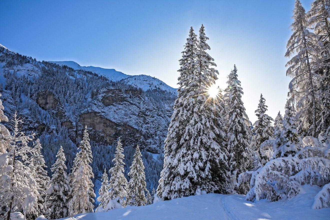 Schöne Weihnachten & ein gutes neues Jahr